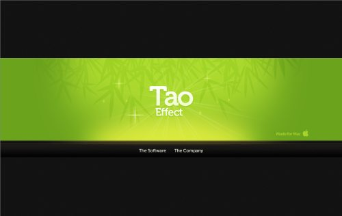 taoeffect.com Website Design