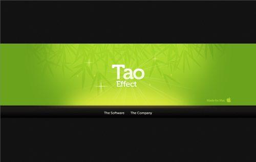 taoeffect.com Website Design